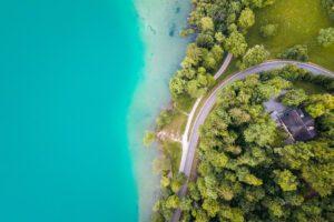 Lake Bled coast