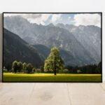 Linden in Logar Valley preview framed image