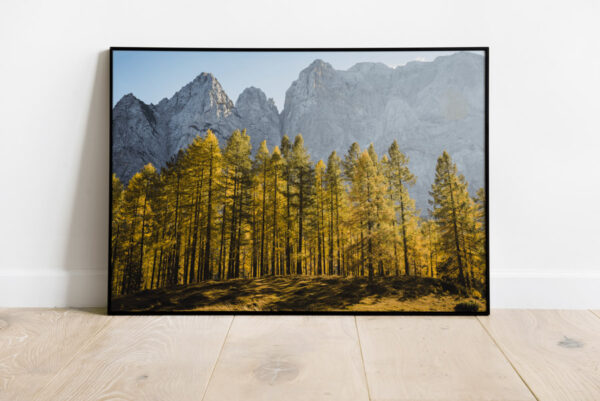 Autumn Larch on mountain Slemenova Špica preview framed image