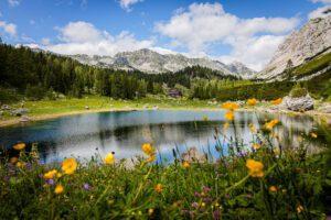 Triglav Lakes Valley in summer