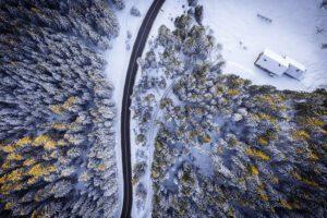Winter road on Pokljuka