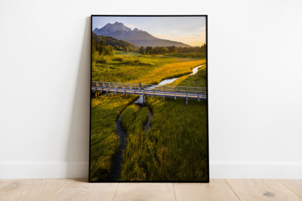 Zelenci nature reserve preview framed image