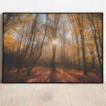 Autumn sunny morning in Bizeljsko preview framed image