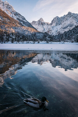 Lake Jasna winter morning