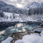 Zelenci winter
