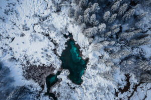 Winter emerald perfection at Zelenci